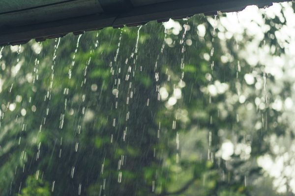 What is the Best Way to Recycle Rainwater?