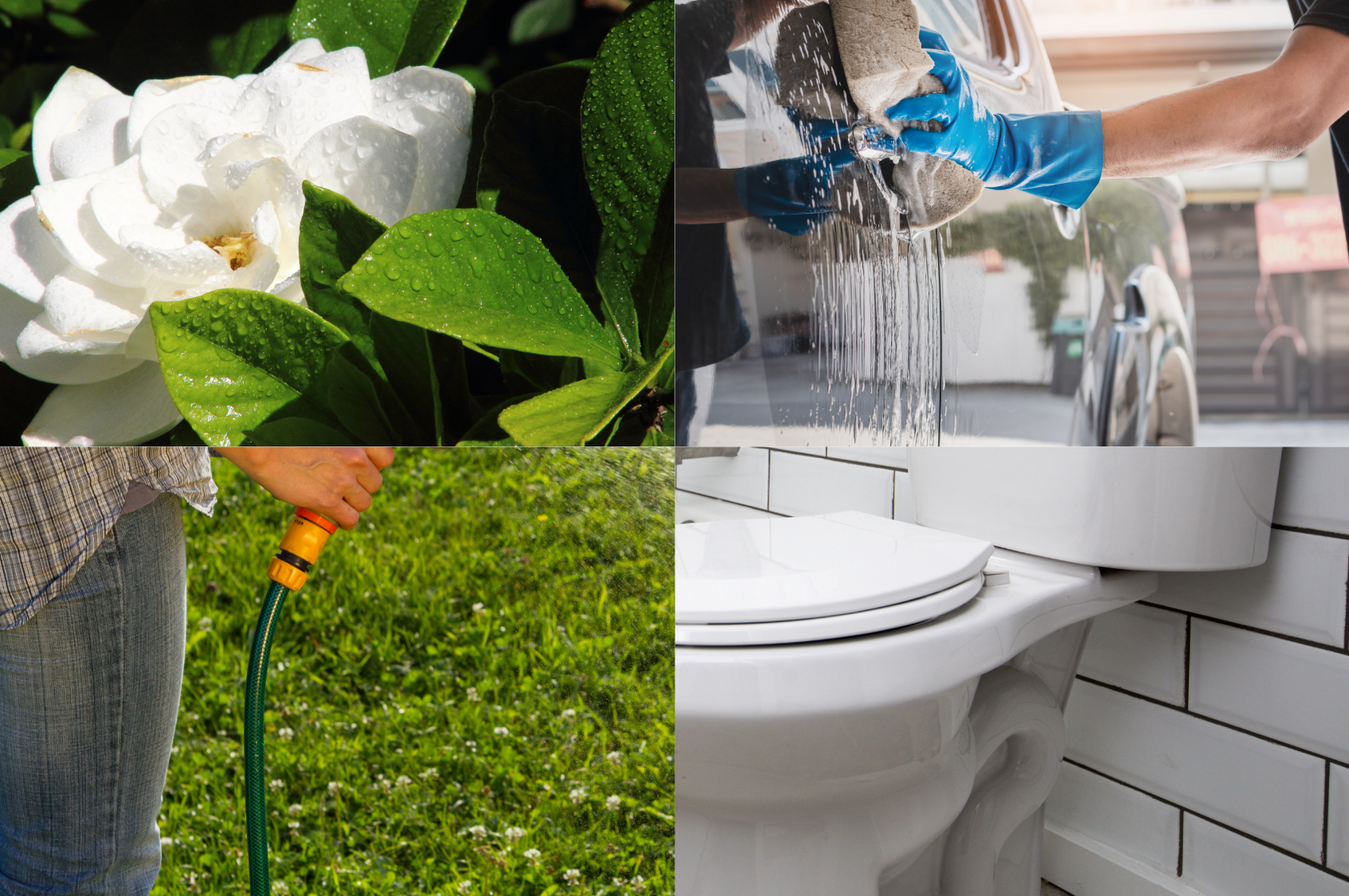What Is The Best Rainwater Harvesting System?